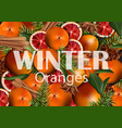 winter background with orange slices vector image