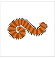 Cute Centipede animal cartoon character vector image