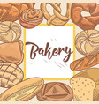 bakery hand drawn design with bread and loaf vector image vector image