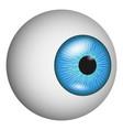 eye anatomy icon realistic style vector image