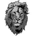 lion head in 3 gray colors interpretation vector image