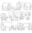 Set elephants