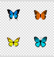 set of beauty realistic symbols with polyommatus vector image