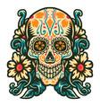 sugar skull with flower border vector image vector image