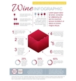 Wine Infographic Template vector image