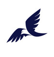 bird business logo vector image