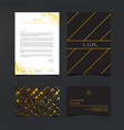 luxury branding and corporate identity template vector image