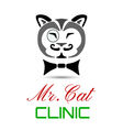 cat clinic vector image vector image
