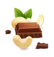 chocolate and cashew nut vector image vector image