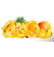 fruit in juice splash panorama strawberry vector image vector image