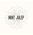 Hand drawn sunburst - mint julep vector image vector image