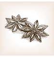 Star anise hand drawn sketch style vector image vector image