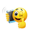 winking smiley talking on a phone of a smiley vector image vector image
