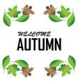 Autumn summer image