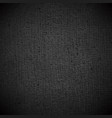 black texture vector image vector image