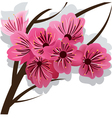branch of blooming cherry tree sakura vector image vector image
