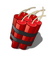 the bundle of sticks of dynamite isolated on a vector image