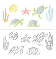 watercolor set turtle coral sea star isolated vector image vector image