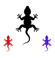 lizards vector image