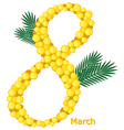 8march mimose vector image vector image