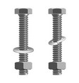 bolts and nuts realistic vector image vector image