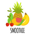 fruits composition for smoothie vector image