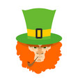 leprechaun with red beard st patricks day vector image vector image