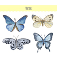 Set of watercolor butterflies vector image vector image