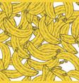hand drawn banana fruit seamless pattern vector image