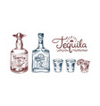 bottle tequila glass shot with lime and label vector image vector image