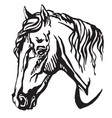 decorative portrait of welsh pony vector image