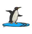 penguin rides on surfboard sketch engraving vector image
