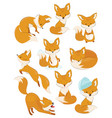 set of cartoon foxes collection of cute foxes vector image