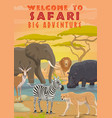 african safari animals hunting sport tours vector image vector image