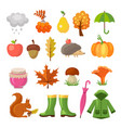 autumn colored symbols icon set autumn vector image vector image
