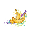 bananas with colorful splashes vector image vector image