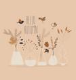 cartoon autumn plants in different bottles hello vector image