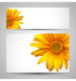 Flower background templates vector image vector image