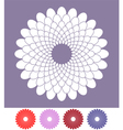 Flower Chrysanthemum vector image