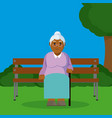 grandmother seated on armchair vector image