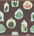 hand drawn colorful terrarium collection on a vector image