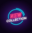 new collection neon sign glowing advertising vector image