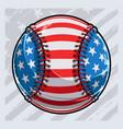 baseball ball with american flag pattern vector image
