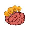 brain bulb light vector image