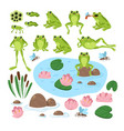 cartoon cute frogs in different positions vector image