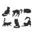 hand drawn cartoon silhouettes of the cats vector image vector image