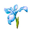 iris on a white background pixel of vector image vector image