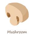 mushroom icon isometric style vector image
