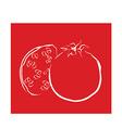 Pomegranate vector image