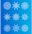 snowflakes unique ice crystals ornamental patterns vector image vector image
